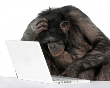 monkey_computer_perry_hall_pc_repair